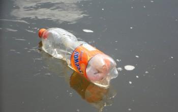bacteria-eats-plastic-waste