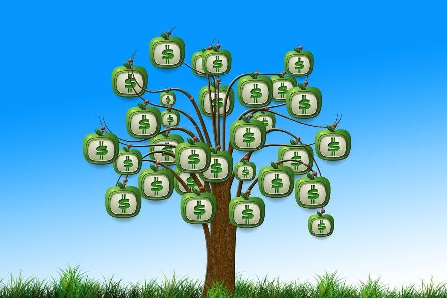 startups-growth-profitability